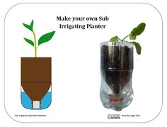 Soda Bottle Irrigation System | great tutorial by Ilona de Jongh | PDF | Workshops: Make your own Sub Irrigating Planter #science #recycle #scouts