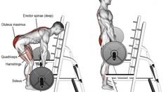Barbell rack pull exercise