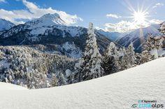 Sunny by Francesco Vaninetti on 500px
