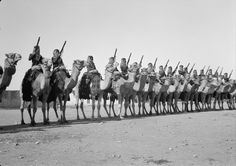 Bedouin soldiers of the English-led Arab Legion line up in Bersheba, Palestine on Feb 2, 1940. The Arab Legion played a key role in defeating the Iraqi uprising in 1941 and was also an effective force during the Syria-Lebanon campaign, both early successes for the Allies in WW2. Eventually they came under Jordanian control.