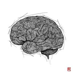 -Brain- from Human Body Study Series by Body Study, Office Pictures, Doctors, Human Body, Anastasia, Anatomy, Bones, Body Art, Contemporary Art