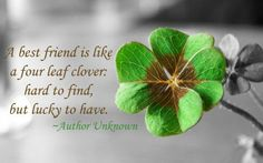 Best friend Quotes for girls13
