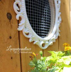 Coop window