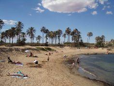 Costa Blanca - Torrevieja Palm fringed beach of Cala Ferris near the Nautilus restaurant at Punta Prima