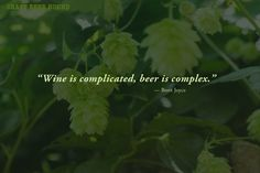 Beer is great, we can all agree on that, so just for fun we dug around to bring you a 24 pack of fun, funny, and unique beer quotes--Enjoy!