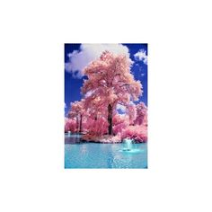 9 Stunning Photos of Beautiful Clouds Bt images ❤ liked on Polyvore featuring pink