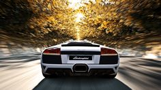 Download Lamborghini Wallpaper