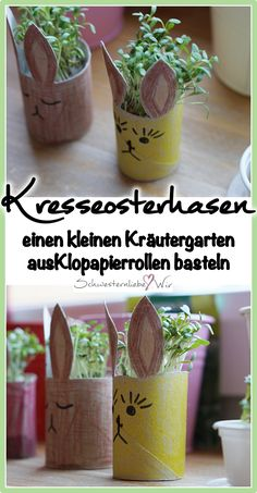 Basteln mit Klopapierrollen: aus diesen kleinen Osterhasen wird ganz schnell ein… Crafting with toilet paper rolls: from these little Easter bunnies is very quickly a small herb garden, Easter decoration for children, tinker with children, sow cress. Diy For Kids, Crafts For Kids, Small Herb Gardens, How To Make Crepe, Diy Y Manualidades, Cress, Toilet Paper Roll, Diy Home Crafts, Tree Crafts