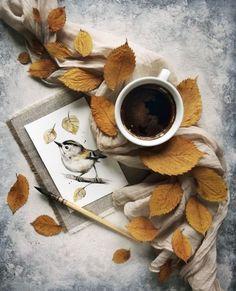 Inexpensive Coffee Mugs Refferal: 9349161831 Coffee And Books, I Love Coffee, Coffee Time, Morning Coffee, Cozy Coffee, Morning Gif, Coffee Break, Coffee Shop, Coffee Mugs