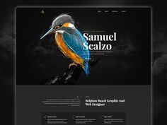 "Popatrz na ten projekt w @Behance: ""Personal website"" https://www.behance.net/gallery/43818043/Personal-website"