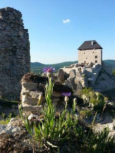 Regéc, Hungary Hungary, My Photos, Mansions, House Styles, Home Decor, Decoration Home, Manor Houses, Room Decor, Villas