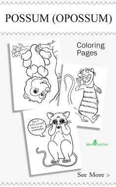 Are you searching for possum coloring pages? Here is the list of printable coloring pages specially designed for your kids! Color it with your kids favorite color!