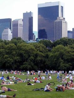 Central Park - a summer day on Sheeps Meadow