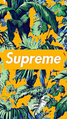 257 Best Supreme Everything Images Supreme Supreme Clothing