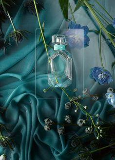 Benedict Morgan — Cosmetics & Fragrances