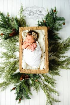 Shabby chic newborn Christmas Baby girl. Tree trimmings. Newborn Session…