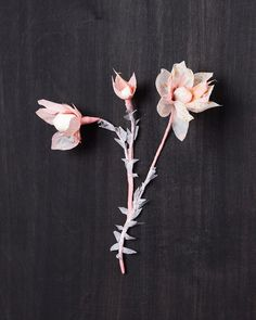 paper flowers by stylist/designer, Rebecca Thuss, seen @ simplesong