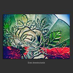 Meridiana claridad: Rosa desestructurada