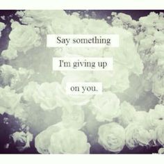 """...say something im giving up on you"" my favorite song at the moment"