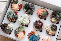 These Wedding Cakes Look Like Real Succulent Plants | Brides.com