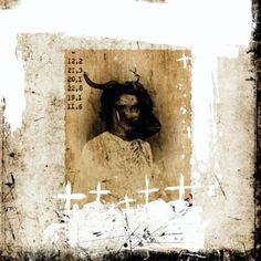 CATALOGO DE BESTIAS by Alvaro Sánchez (b1975; Guatemala) http://www.artslant.com/global/artists/show/135028-alvaro-s%C3%A1nchez