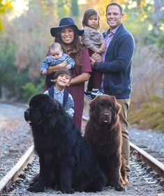 How a family's three children became best buddies with their two giant Newfoundlands | Daily Mail Online