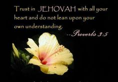 """""""Trust in Jehovah with all your heart and do not rely on your own understanding.""""--Proverbs 3:5  (New World Translation of the Holy Scriptures--2013 Revision) jw.org"""