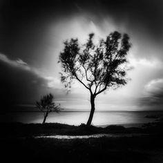 By Romanian photographer Bogdan Panait. S)