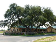 The Salt Lick Barbecue in Round Rock, TX  Number of Visits 4