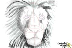 How to Draw a Lion Face.Did you know that the lion is considered to be the second to the largest cat right after the tiger? Its roaring face will be our art image today and we have made the steps so easy for kids. Check out our cartoon drawing lesson how to draw a lion face if you want to make a realistic looking drawing.First, we are going to sketch the head shape. Draw the necessary lines and curves for the facial specifications of the lion. Make the lines on the face of your art drawing…