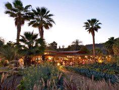 Flora's Farm in Cabo, Mexico