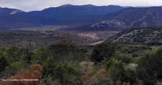 Acropolis, Grand Canyon, Greece, Mountains, Nature, Travel, Greece Country, Naturaleza, Viajes