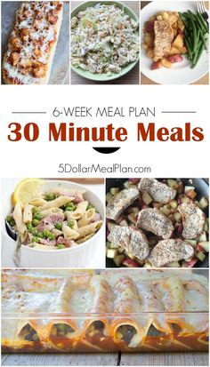 Dinner in a Dash! The 30-Minute Meals Plan with Recipes & Shopping Lists is Here! | 5DollarDinners.com