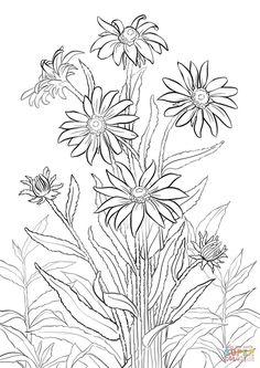 Daisy Flower CIP Art Silhouette