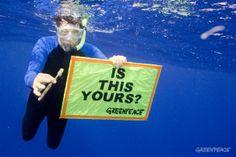 The trash vortex | Greenpeace International