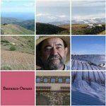 Barranco Oscuro Vineyards - Cadiar - Granada Province