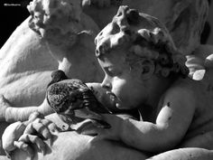 Living Stone (Rome)