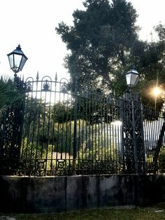 #Fence #Sunset #Beautiful #Day #Green #Italy #Italia #Napoli #Naples #Culture #Travel #Vacation #World #Tourist #Backpacker #Backpacking