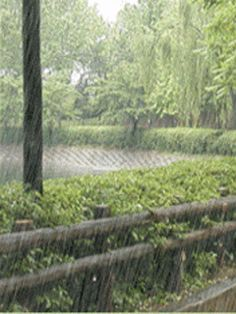 Chove Chuva…Chove sem Parar… | Humor de Mulher!