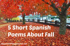 Short Spanish poems about fall by author Douglas Wright. Five four-line poems for children with basic vocabulary, rhyme and illustrations.