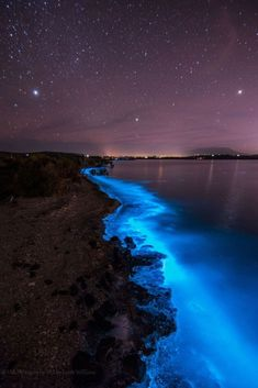 Sea Sparkle - Extreme Bioluminescence in Tasmanian Waters Beautiful Sky, Beautiful Landscapes, Beautiful World, Sunset Wallpaper, Nature Wallpaper, Iphone Wallpaper, Sparkle Wallpaper, Amazing Photography, Nature Photography