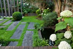 Carré de verdure - soleirolia between stones Garden Steps, Side Garden, Terrace Garden, Water Garden, Garden Paths, Back Gardens, Small Gardens, Outdoor Gardens, Modern Landscaping