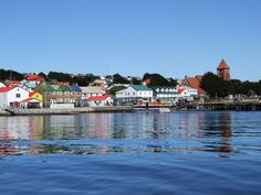 Falkland Islands... maybe heredity the reason I'm so tied to the southern hemisphere