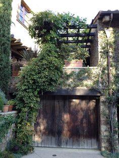 greened walls #outdoor