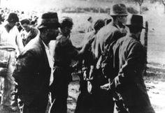 WWII. - 1941. - Croatia / NDH - Hercegovina - ustaše odvode Srbe na klanje