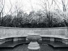 13. Whispering Wall, Charlottesville