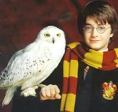 Harry Potter et Hedwige ♥
