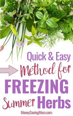 A Quick & Easy Method for Freezing Fresh Herbs - don't let your summer herbs go to waste this year! Freeze them! A Quick & Easy Method for Freezing Fresh Herbs - don't let your summer herbs go to waste this year! Freeze them! Freezing Fresh Herbs, Preserve Fresh Herbs, Freezer Cooking, Cooking Tips, Freezer Recipes, Frugal Recipes, Simple Recipes, Summer Recipes, Herb Garden Design