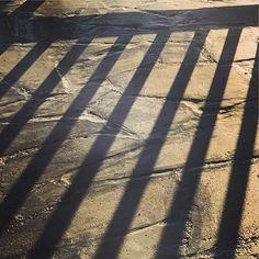 Shadows of success ahead :) sun offers a nice play today again! #cypruslife #cypruswinter #livinginparadise #begrateful #seieinheld #lebeseelischeidentität