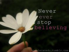 believe, flower, green, never, photography
